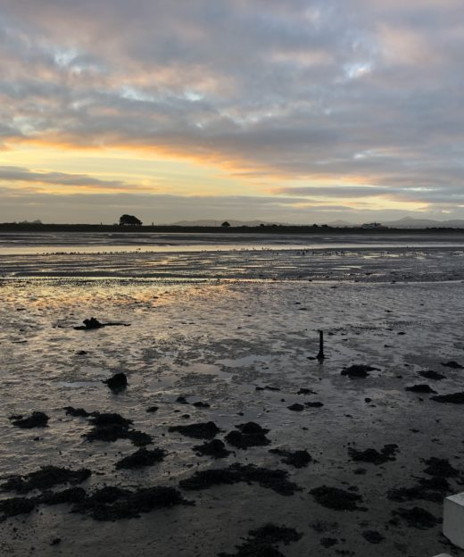 The photo is a sunrise over Dublin Bay at low tide. Bull Island is in the background.
